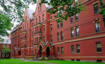3 Sencillas claves de Harvard para evitar el deterioro cognitivo.