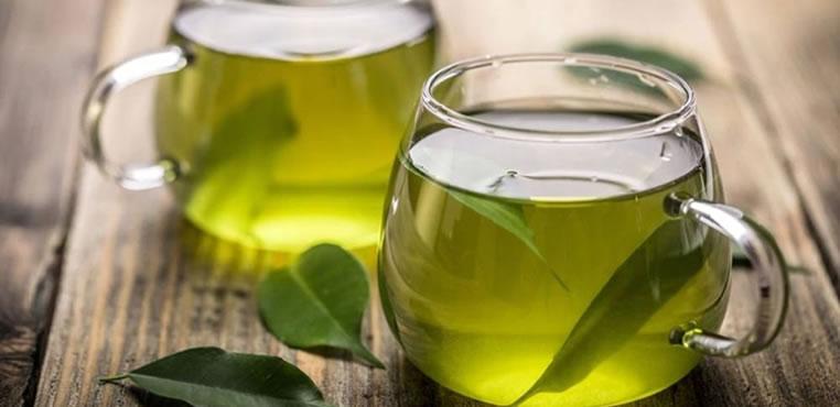 Medicina natural: plantas que mejoran la salud y la longevidad