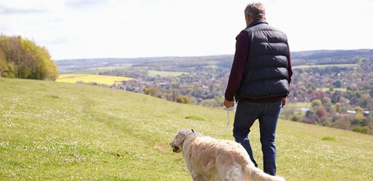 Los beneficios de una caminata diaria
